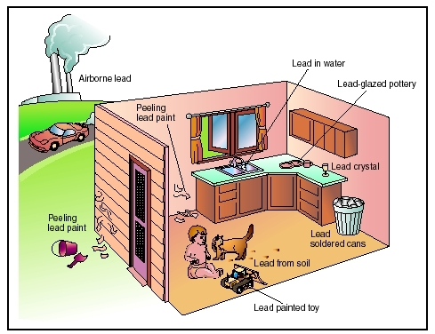 Lead facts central virginia home inspections for What are the dangers of lead paint