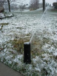 Frozen Sprinkler